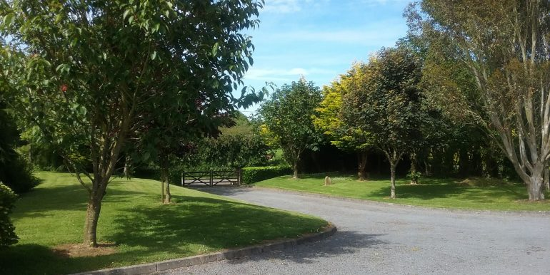 ian garden 3