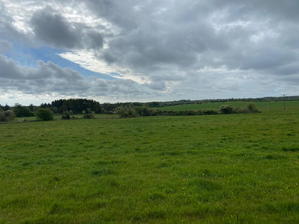 Aughclare, New Ross, Co. Wexford
